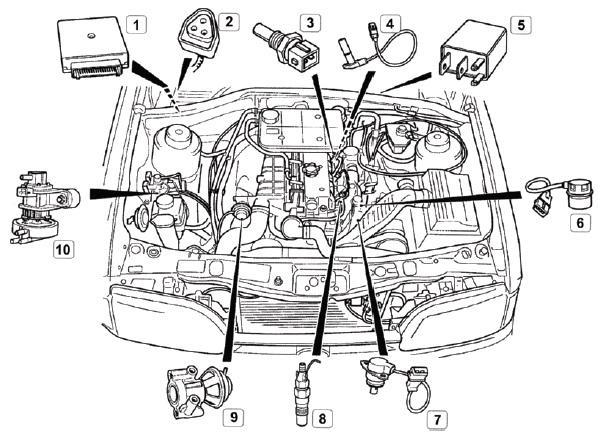 Расположение элементов управления автмообиля ФОРД 2,5 л TCI